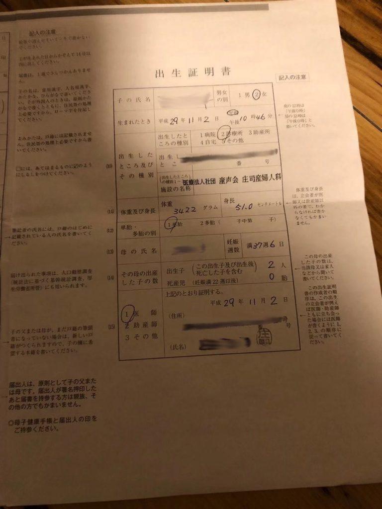 viewfile 10 2 768x1024 - 日本出生证翻译盖章